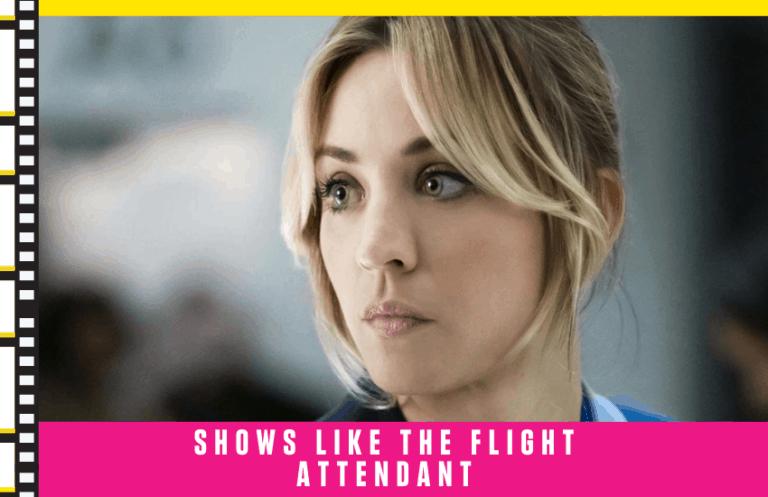 Shows Like The Flight Attendant